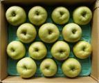 青森県産 訳あり家庭用りんご 王林 約5キロ